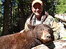 Wyoming Color Phase Black Bear