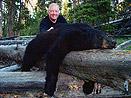 Wyoming Black Bear