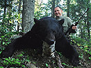 Quebec Black Bear