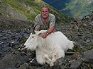 BC Mountain Goat
